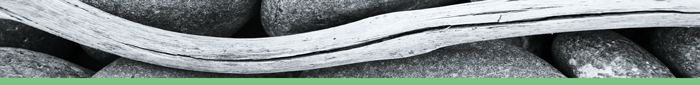 maderaverde